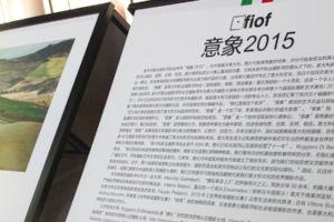 FIOF a Lishui 2015: Cronaca di un successo.