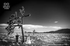 wedding-in-usa-cristiano-ostinelli-stefania-falcinella-photographer (84)