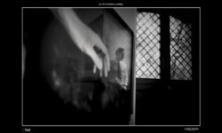 06_vitofinocchiaro