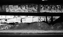 STREET-PHOTOGRAPHY-2