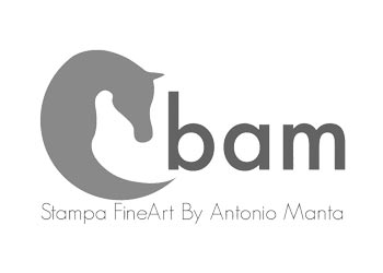 Stampa FIneArt BAM